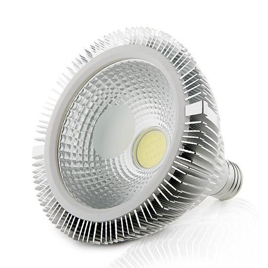 Ampoule LED 'Castine-en-Plaine' 15W 1350Lm Par38 E27