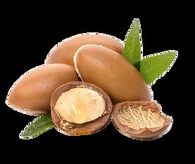 argon nut.png