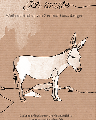 Paperbackcover Pleschberger.PNG