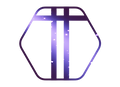 women_s_logo_purple-removebg.png