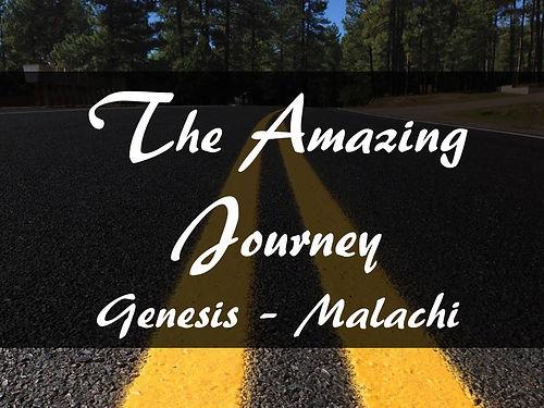 The Amazing  Journey.jpg