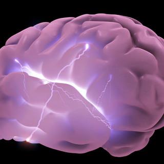 Purple Brain.jpg
