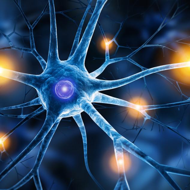 Neuron.jpeg