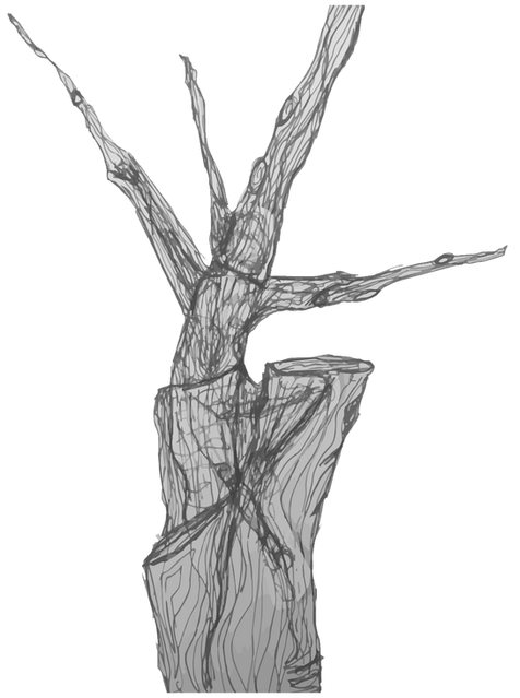 tree dancer greyscale.png