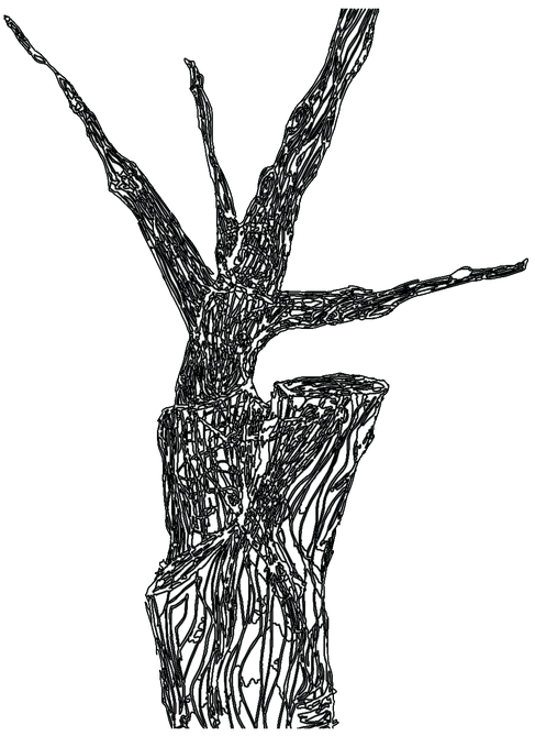 Tree Dancer Outline .png