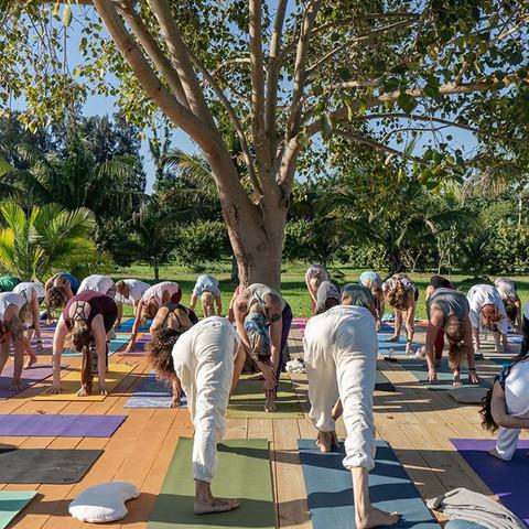 Outdoor Yoga Class, Yoga Teacher Training Practice