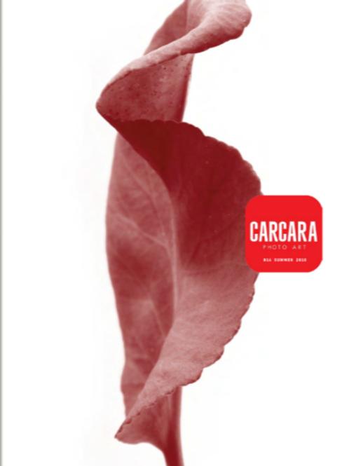 Revista Carcara 14