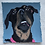 Thumbnail: Custom Pet Portrait