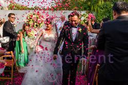 Backyard Wedding at Home Dubai