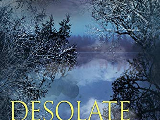 Desolate Shores (An Aspen Adams Novel of Suspense Book 1) by Daryl Wood Gerber