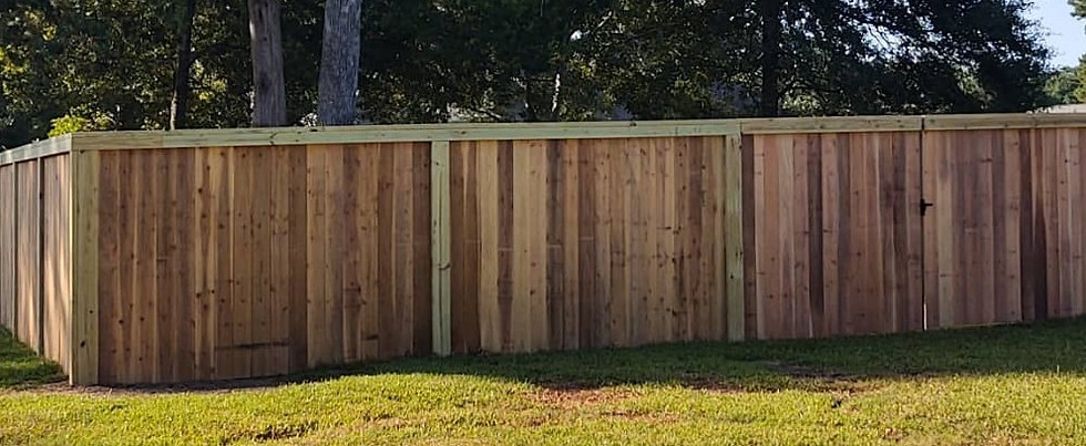 Privacy Fence_edited.jpg