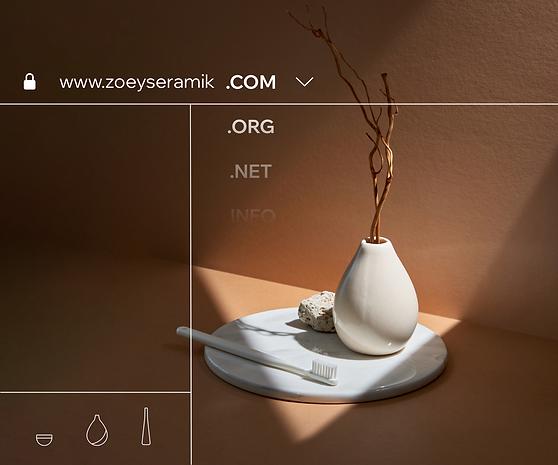 Birkaç domain uzantısına sahip bir web sitesinin resmi