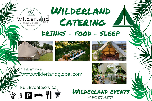 Wilderland srvice.png