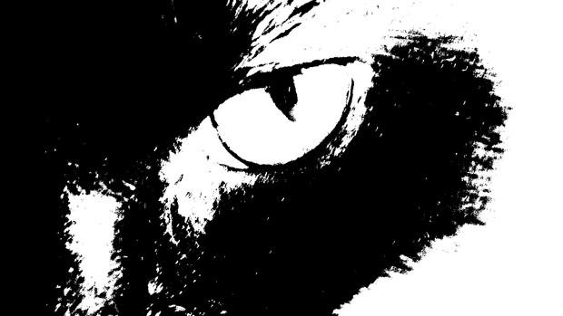 Bastardcat logo