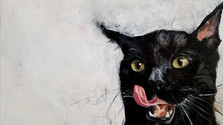 Mao Meow
