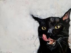 Mao Meow,6x8,oilonpanel,$350_sml