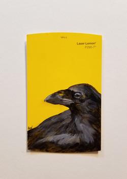 Laser Lemon,2.75x4.5,oilonpaper,$70_sml.