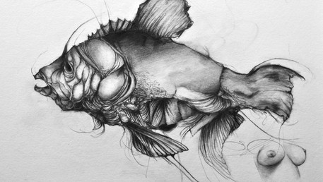 Fish & Boobs