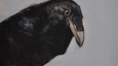 A Murder of Crows III