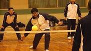 手綿球taspony課程