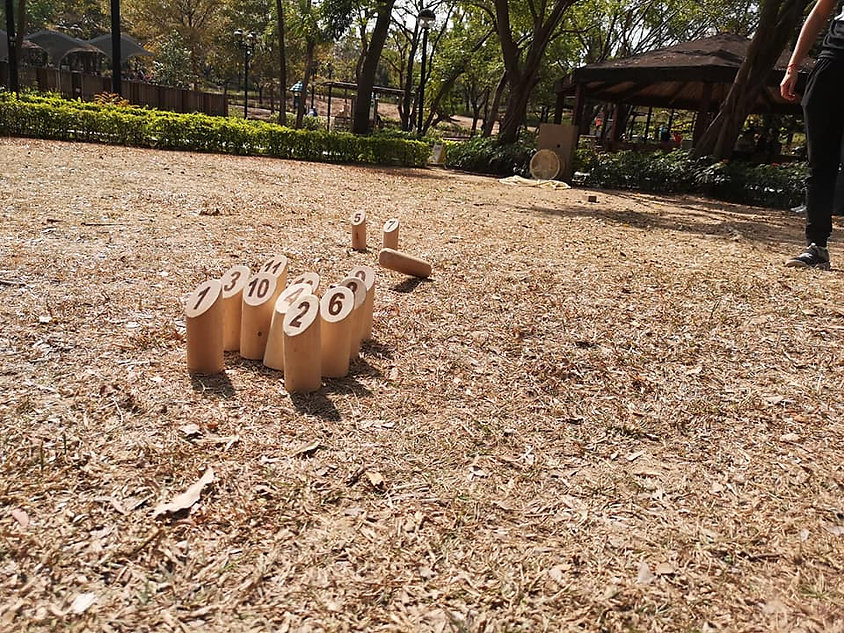 芬蘭木柱molkky長者 芬蘭木柱運動