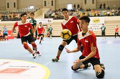 香港巧固球比賽賽況