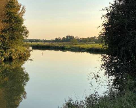 The Thames at Kelmscott: Tom Barry