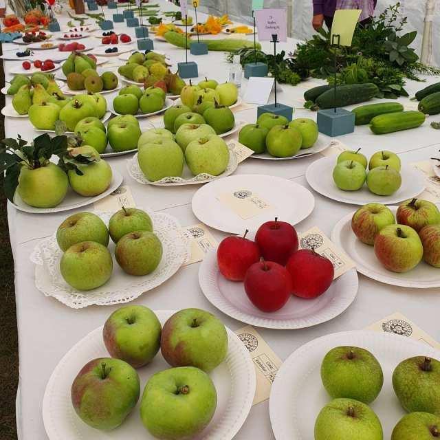 009 Fruit