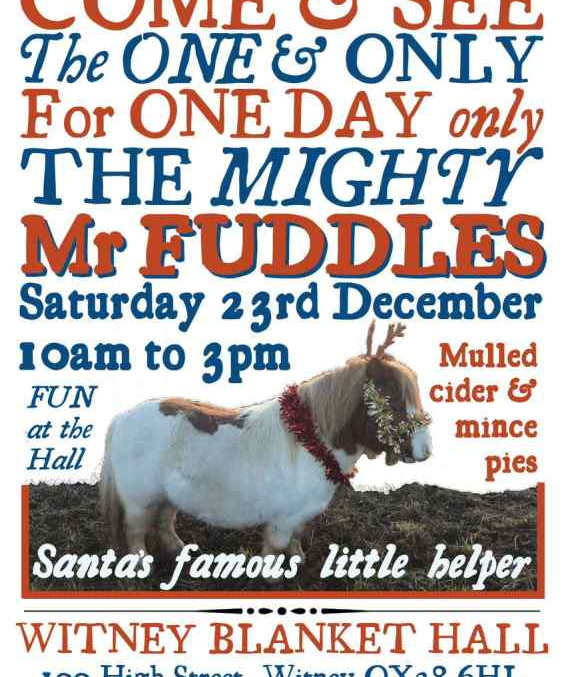 Mr Fuddles, the most famous Shetland in Oxfordshire, comes to the Hall