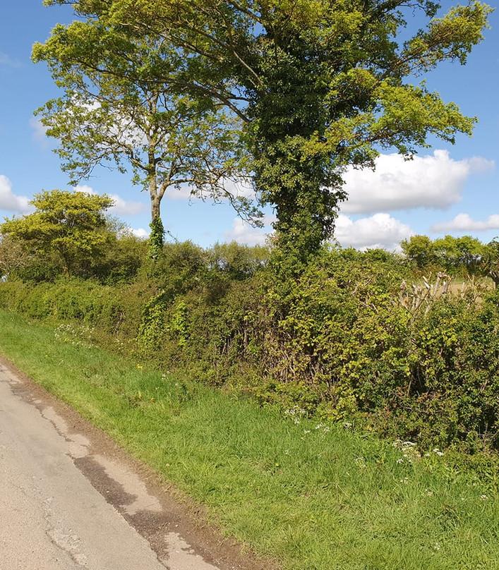 Towards Shire Gate Filkins: RM