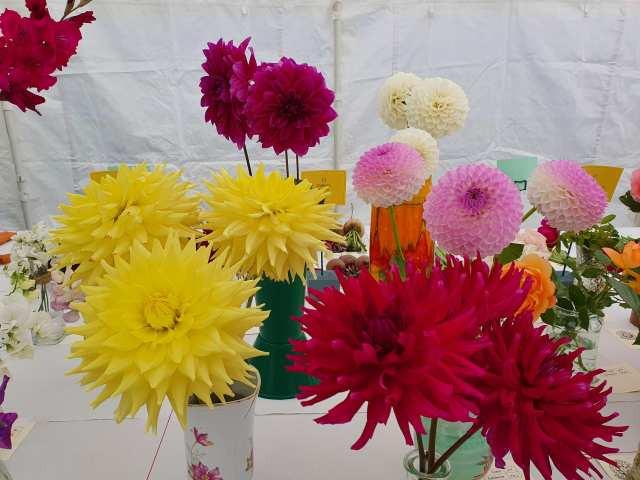 005 Round Flowers