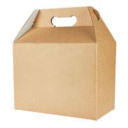 cardboard box isolated on white backgrou