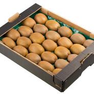 Kiwi fruit in a carton box isolated on w