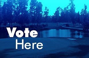 block-vote here.png