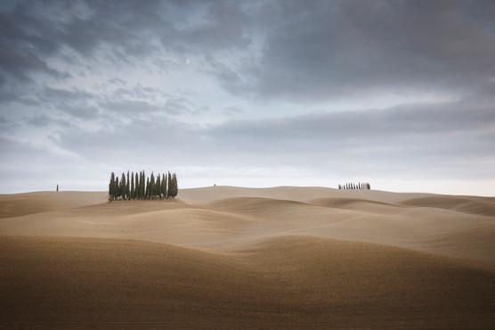 Tuscany Waves