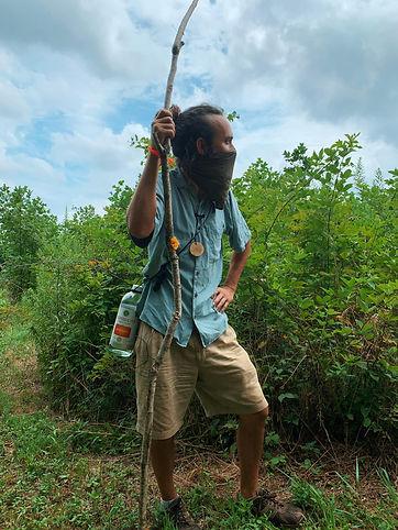 Eric Plant Walk 3.jpg