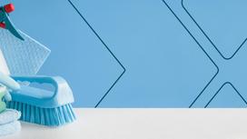 Confira técnicas essenciais de limpeza para atrair mais clientes