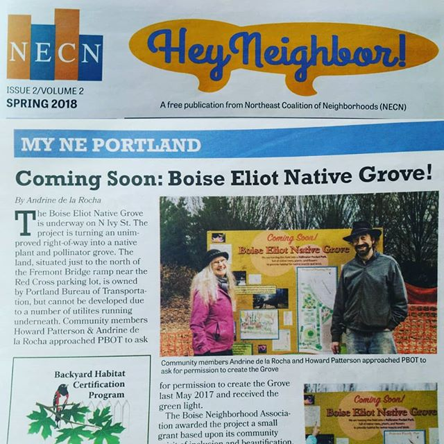 Thanks Northeast Coalition of Neighborhoods for the write up in Hey Neighbor! I'm so glad folks are