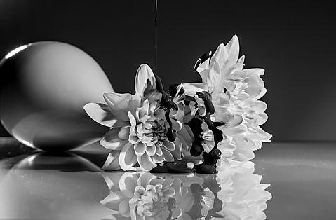 fotografee-produkt-flower-sw-.jpeg