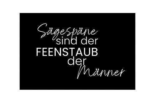 FEENSTAUB - 21x30