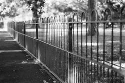 blurry fence peckham