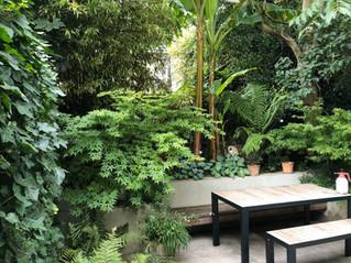 modern-garden-design-london