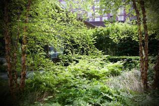 gardens-for-public-spaces-london