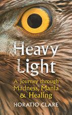 Heavy Light