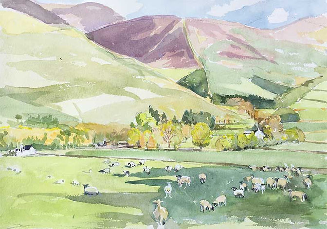 Hallyards from The Glack, Peeblesshire