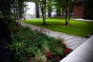 urban-gardeners