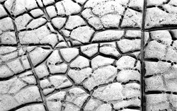 limestone pavement kimmeridge