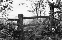 gate wenlock edge