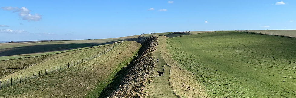 Dog-on-ridge-1200.jpg
