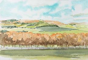 Stobo Hills from Dawyck